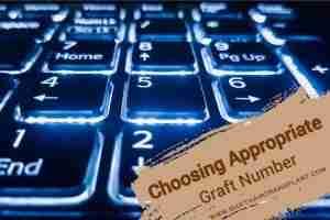 Choosing Appropriate Graft Number, a black backlit numpad.